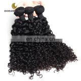 wholesale human hair virgin brazilian wet and wavy hair