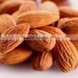 OEM/ODM supply sweet almond oil base oil for skin care