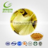 food ginkgo biloba leaf extract
