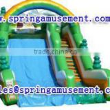 Interesting outdoor high quality giant inflatable slide, inflatable water slide, inflatables SP-SL060