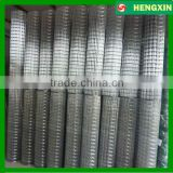Electro Galvanized welded wire mesh farm Fence