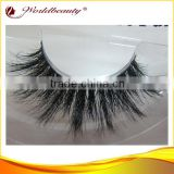 2014 new arrival Hot fashion style horse hair lashes