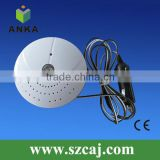 Wired smoke detector for car with cigaretter lighter plug
