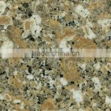 Yellow and White Particle Granite Stone Counter Top