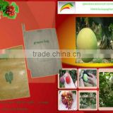 fruit growing paper bag (for apple,banana,grape,pear,peach,pomegranate,mango and etc)