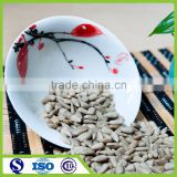 Chinese fresh bakery hulled sunflower kernel sell