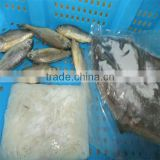 live food and sea quality fish wholesale