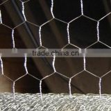 Camel Coop Hexagonal wire mesh used as animal cages high quality galvanized pvc coated