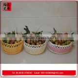 new small plastic perforated fast food basket