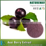 Hot Selling 100% natural wisapple berry drink acai powder,concentrated acai berry powder