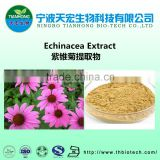 professional manufacturer of high quality echinacea extract powder
