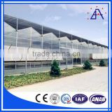 Aluminium Profile System/Aluminium Extrusion/Aluminium Profile For Greenhouse Manufacturer