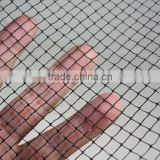 Small hole Anti bird garden netting,plastic,black,aperture size 12mm square hole