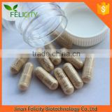 private label Herbal Supplement natural ginkgo biloba capsules                                                                         Quality Choice