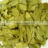 Bay Leaf Laurel Leaves 10KG Cartons 20KG Cartons 50KG Bailes