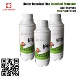 Herbal Plant Medicine Intestinal Protector Anti Diarrhea For Adult Chicken Poultry