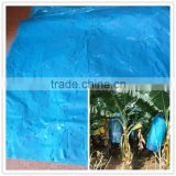 Plastic banana bunch cover with pesticide treatment