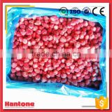 China Frozen Organic Iqf Strawberry Diced/Whole