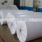 China Wholesale PP Name of None Woven Fabric