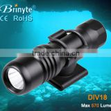 Brinyte New Arrival Mini Led Flashlight with 1*aa Battery                                                                         Quality Choice