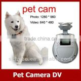 2012 new hot sell--mini digital pet camera