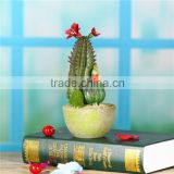 Wedding Decorations fake pot plants miniature cactus , cactus pot