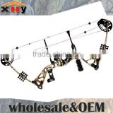 China Archery Compound Bow 195 for Hunting and Shooting