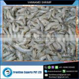 Best Quality Produce Healthy Shrimps from Reliable Supplier