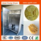 fruit drying machine energy-saving heat pump dryer