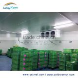 fruit and vegetable cold room , sandwich panel cold room , mini cold storage                                                                         Quality Choice                                                                     Supplier's Choice