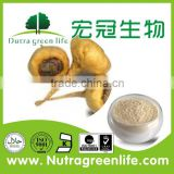 52USD origin peru Lepidium peruvianum Increase the quality of sperm Maca powder Maca P.E.