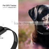 Geo-fencing alarm Multi-function waterproof pet gps tracker Dog Cat kids gps tracker via GSM network