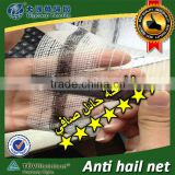 Yemen used anti hail net / 30102-50 / Shanghai Factory , Quality Assurance!!