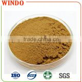 GMP Factory Supplied Organic Water-soluble Tuber Onion Seed Extract Powder with Best Price