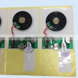 Greeting Card/Toys/Gifts/Voice Module With Pre Recorded Sound Chip
