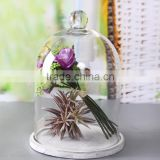 Glass bell dome for home decoration indoor                                                                         Quality Choice