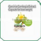 Chinese formula garcinia cambogia extract capsules with lower price