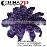 CHINAZP Factory Exporting Bulk Sale Top Selling Colored Striped Eggplant and Black Large Ostrich Feathers