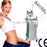 Beauty Salon Used Multifunction Lose Weight/ Fat Reduction Freezing Cryolipolysis Machine