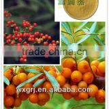 Flagship Products Natural Sea Buckthorn/Hippophae Rhamnoides Extract Powder Seabuckthorn Flavone
