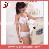 Teenage sexy full breast tube bra , teen girls hello kitty bra and panties set, teenage bra wholewale
