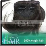 Brazilian Virgin Hair Bangs Fringe