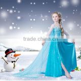 2015 Elsa Frozen Dress For Girl Dress Up Elsa Princess Dress With Snowflake Frozen Movie Cosplay Costume SU036