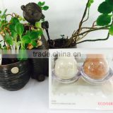 ECONEKO Natural Soap 2 Types Set - Egg, Korea, Organic Soap, Eco Friendly Product