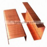 Brass/copper staples for carton packing alibaba China