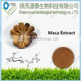 Sex Products High Quality Maca Extract Powder Best Quality Pure Extract 4:1 Maca Root Powder