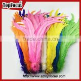 dyed color big long natural grizzly rooster feathers for sale