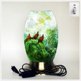 Qin Yuan art desk lamp, desk lamp of custom, creative desk lamp, decoration lamp, LED lamp (Da027)