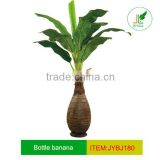 Artificial bottle banana plant wrapped with palm fiber
