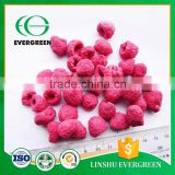 Golden Supplier Bulk Freeze Dried Raspberry